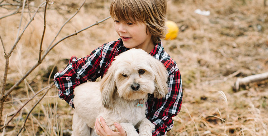 A young boy in a plaid shirt holds his white puppy.